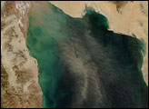 Dust over the Gulf of California