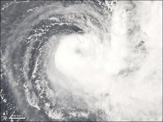 Cyclone Gene