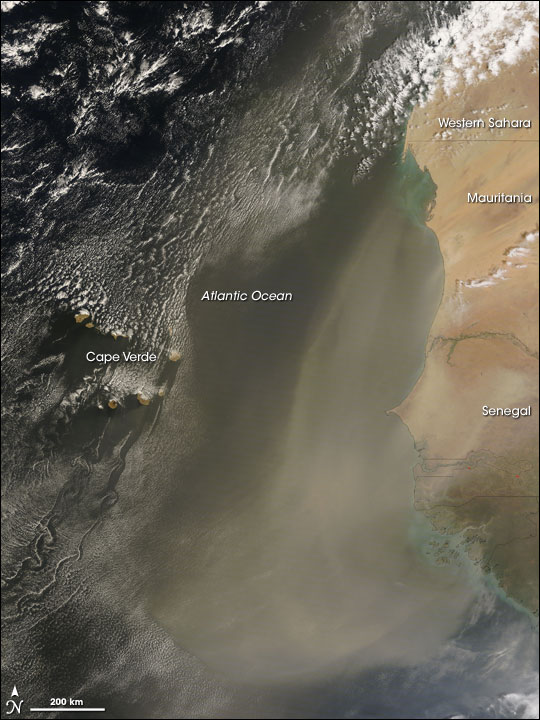 Dust Storm off the African West Coast