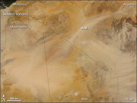 Saharan Dust Storm