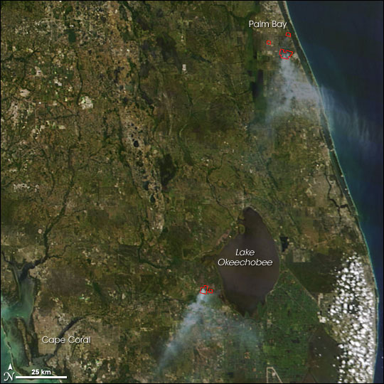 Fires in Florida