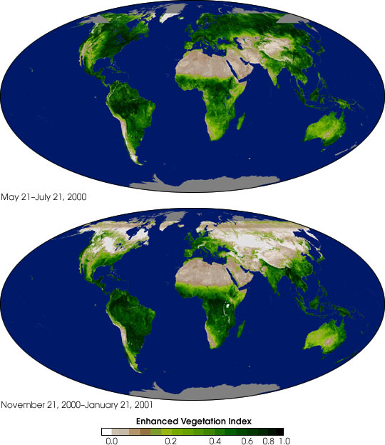 Global Enhanced Vegetation Index Measurements