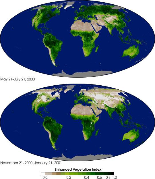 Global Enhanced Vegetation Index Measurements