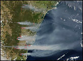 Severe Bush Fires Near Sydney, Australia - selected image
