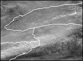 Lake Effect Snow Covers Buffalo