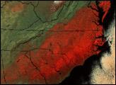 Snow Storm Blankets Southeastern U.S.