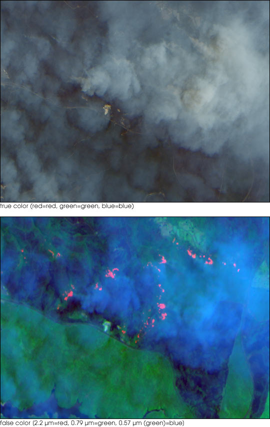 High-Resolution View of Fires and Smoke near Sydney, Australia