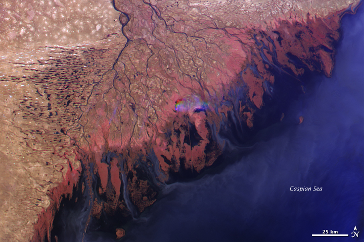 Volga Delta and the Caspian Sea - related image preview