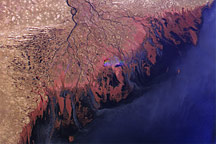 Volga Delta and the Caspian Sea - selected image