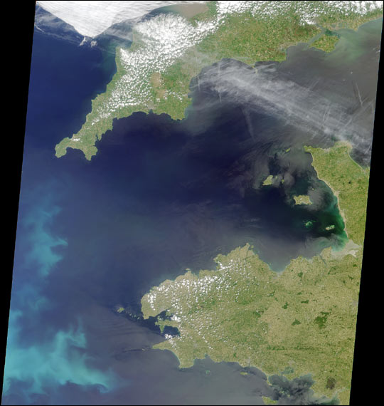 Coccoliths in the Celtic Sea - related image preview