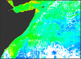 Plant Productivity in the West Indian Ocean - selected image