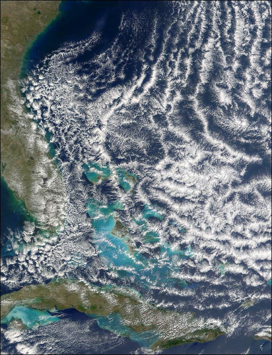 Open-cell cloud formation over the Bahamas