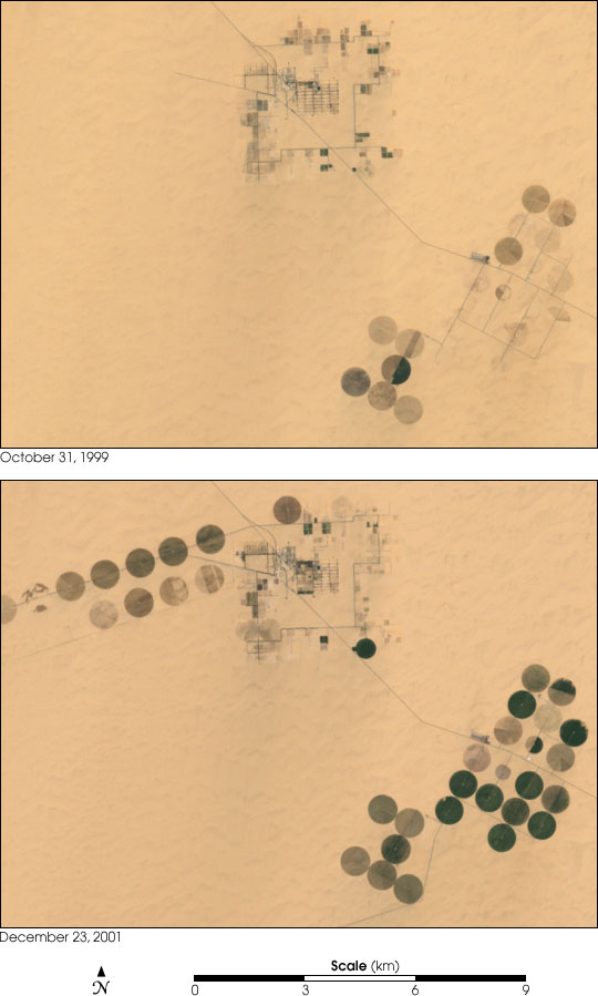 Irrigation in the Heart of the Sahara