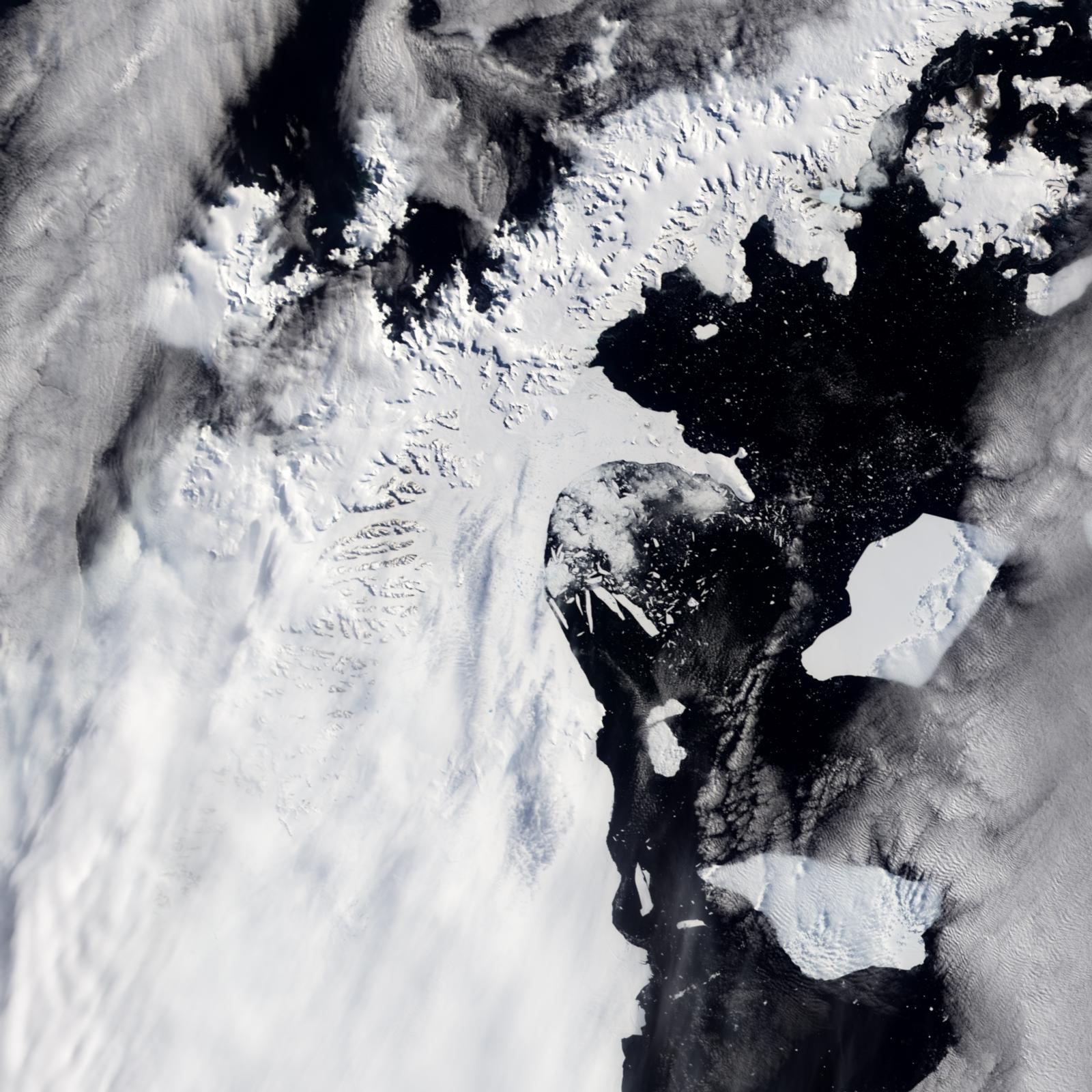 Breakup of the Larsen Ice Shelf, Antarctica - related image preview