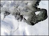 Icebergs Adrift in the Amundsen Sea