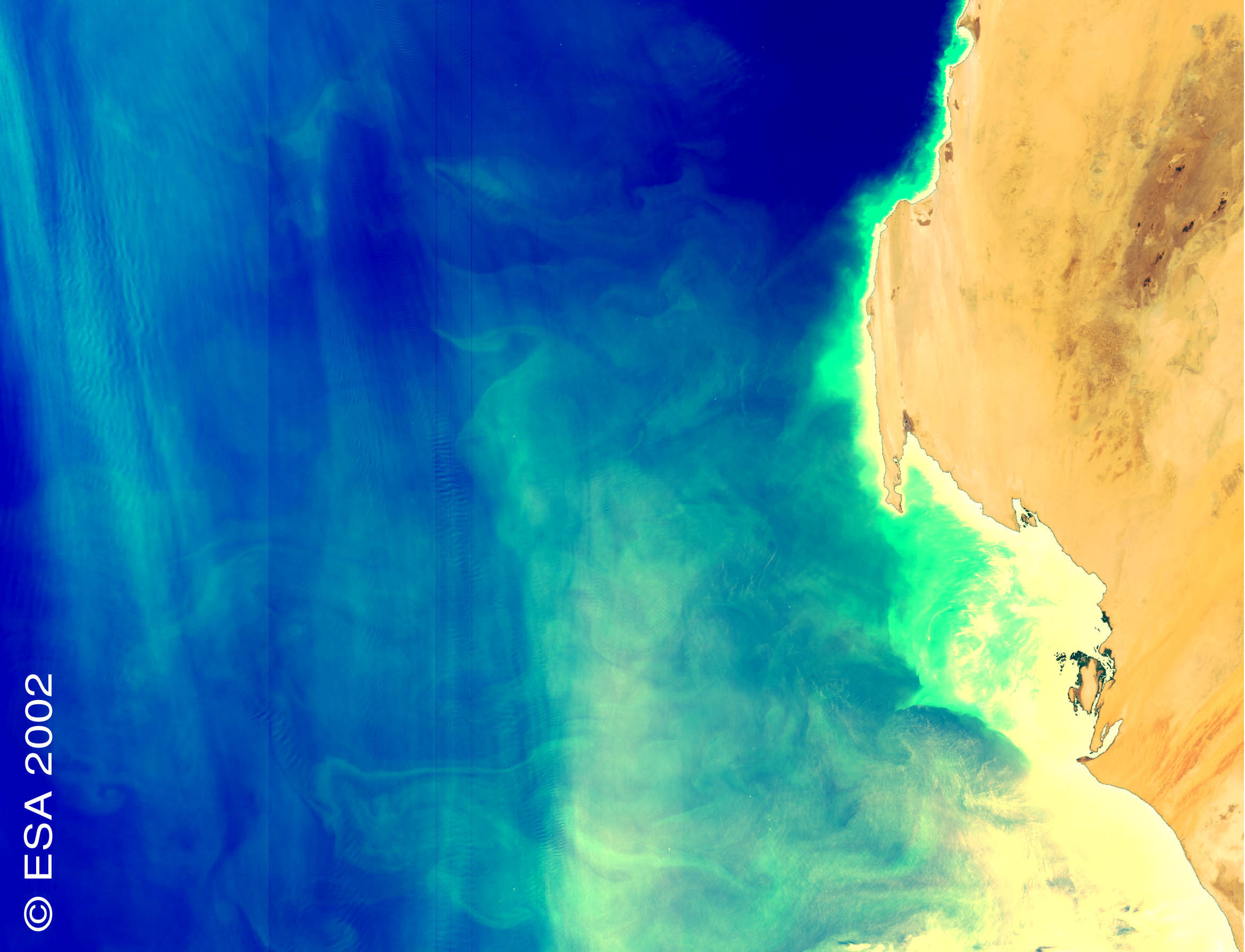 Phytoplankton off the West Coast of Africa - related image preview