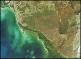 Southern Florida's River of Grass