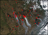 Extensive Burn Scars in Russia's Amur Region