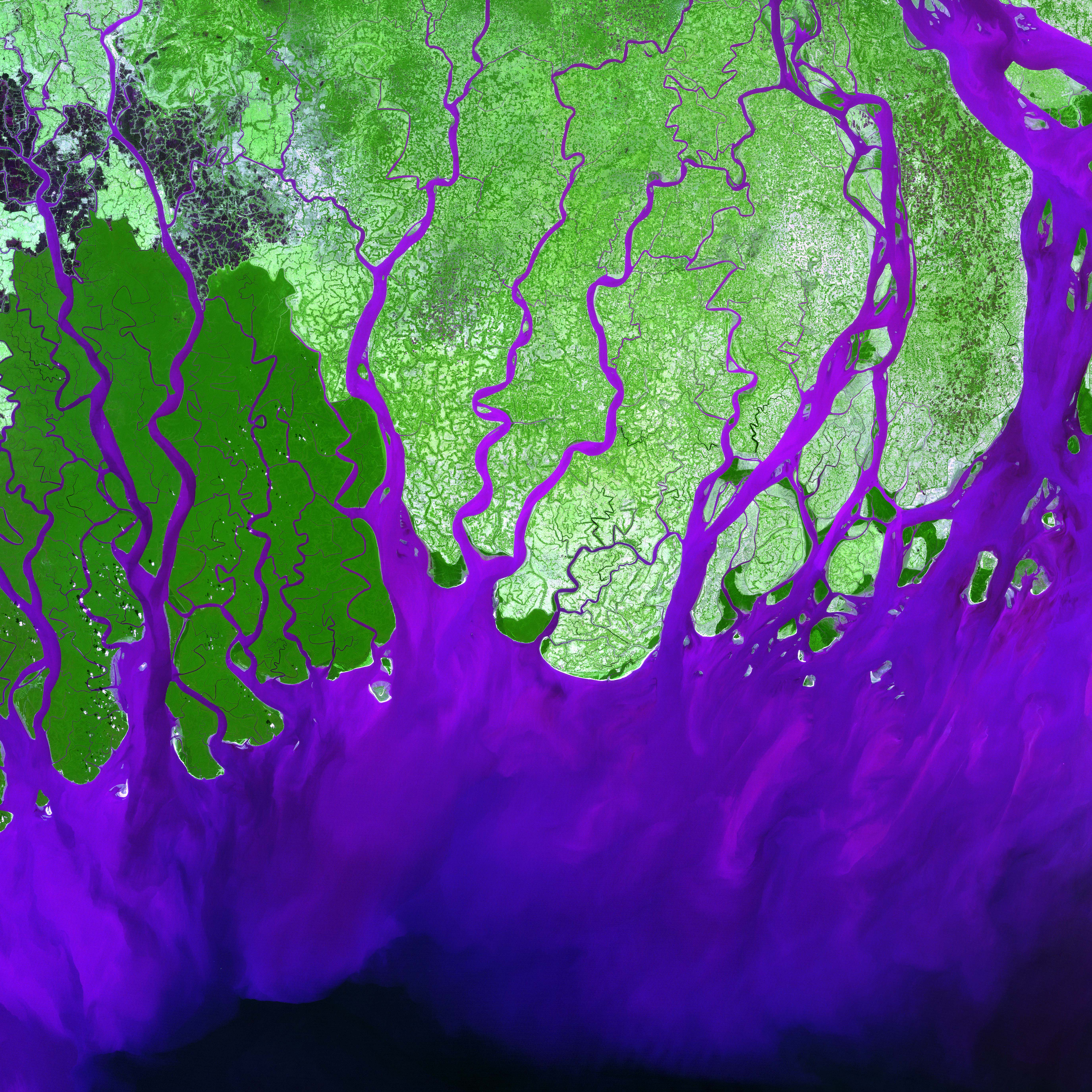 Ganges River Delta  Image of the Day