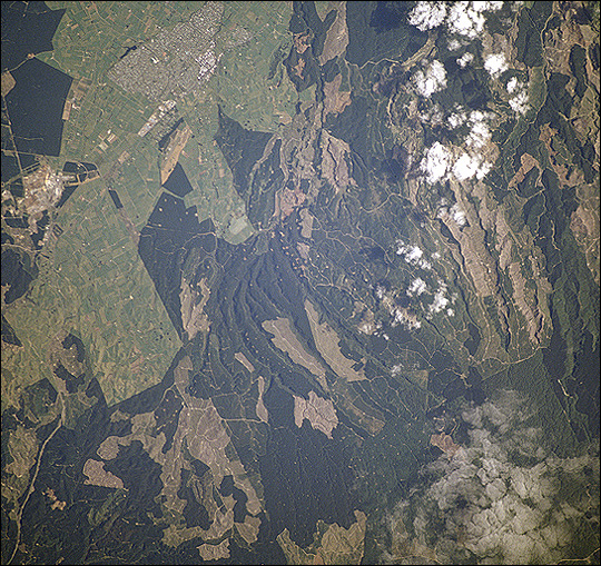 Plantation forestry harvesting near Tokoroa , New Zealand - related image preview