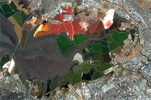 Salt Ponds, South San Francisco Bay