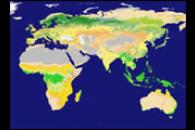 New Land Cover Classification Maps