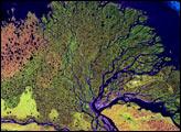 Lena River Delta