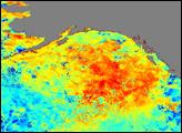 Gulf of Alaska Warmer Than Usual