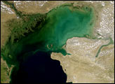 Sediment Clouds the Caspian Sea