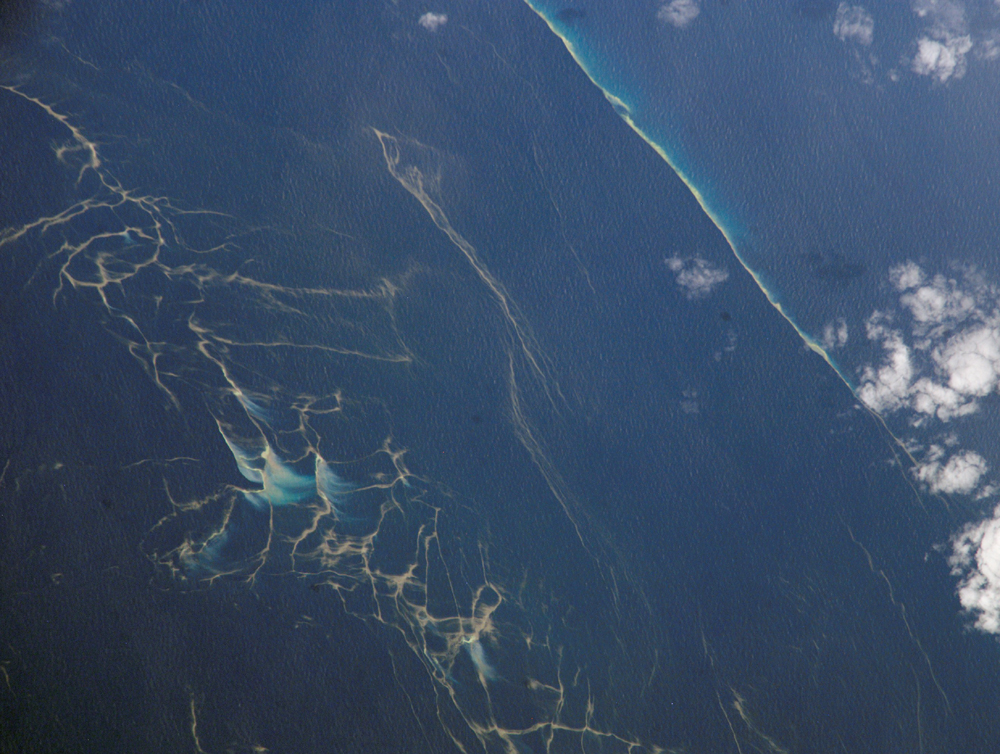 Plankton Blooms, Capricorn Channel - related image preview
