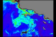 Phytoplankton Bloom off California's Channel Islands