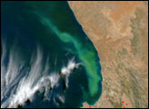 Plume off the Coast of South Africa
