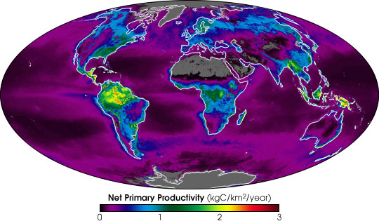 NASA Satellites Measure Earth's Metabolism