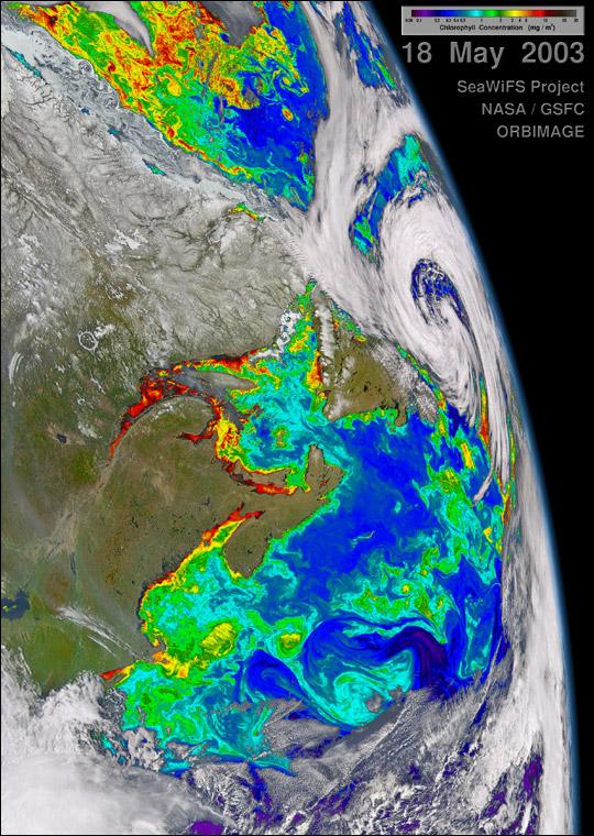 Biological Activity around Maritime Canada