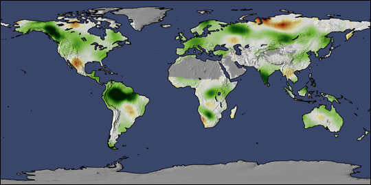 Change in Global Plant Productivity