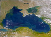 The Danube Spills into the Black Sea