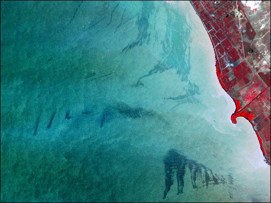 Close-up of Lake Maracaibo, Venezuela