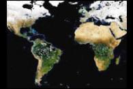 Global, Seasonal Surface Albedos