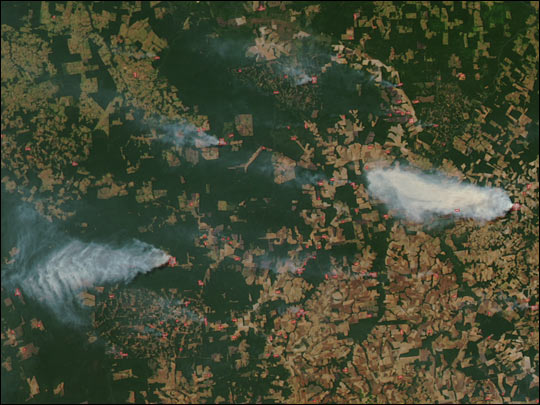Extensive Fires in the Amazon