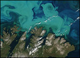 Spectacular Bloom in the Barents Sea