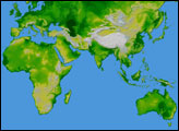 Topography of the World