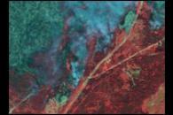 Close-up of Okanagan Fire, British Columbia