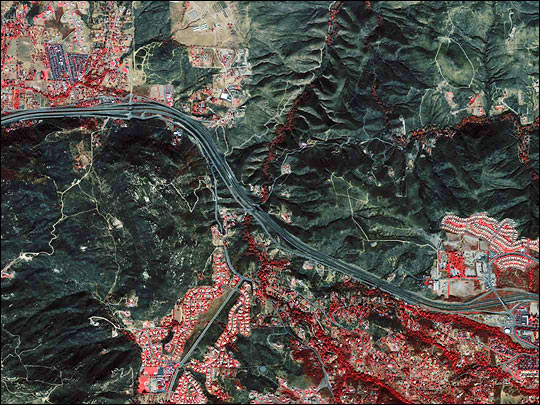 Burned Area near Alpine, California - related image preview