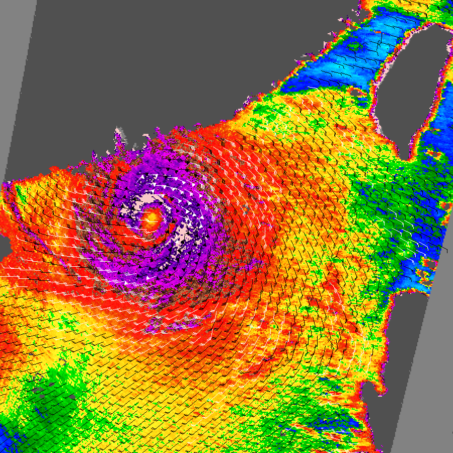 Typhoon Hagupit - related image preview