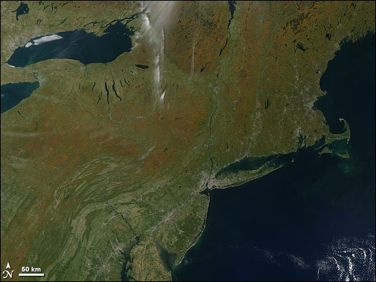 Fall Color in the U.S. Northeast