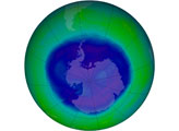The Ozone Hole of 2008