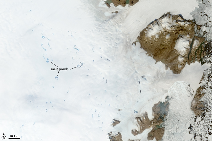 Melt Ponds, Northeastern Greenland