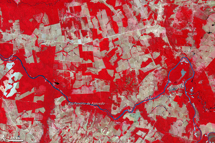 Deforestation in Mato Grosso, Brazil