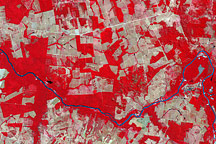 Deforestation in Mato Grosso, Brazil