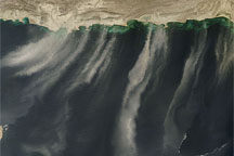 Dust Plumes over the Arabian Sea